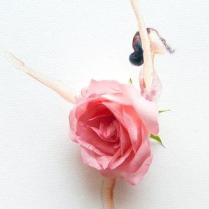 Teresa Chow's Profile Photo