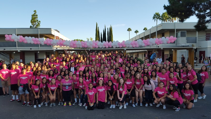 EMHS Walk for the Cure 2015