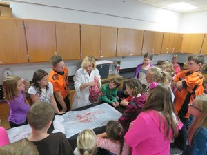 Page students check out some pig lungs during the annual career fair.