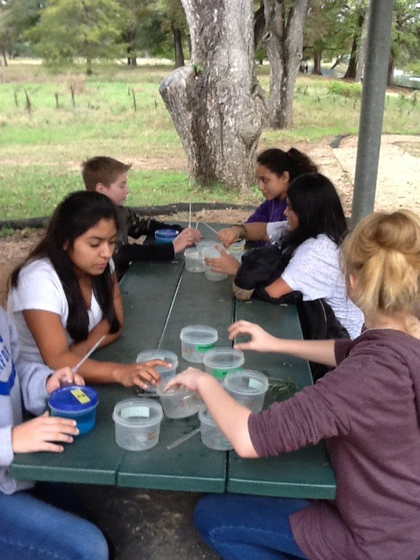 7th grade Science with Mrs. Walden