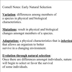 critical thinking understanding natural selection worksheet answers. Black Bedroom Furniture Sets. Home Design Ideas
