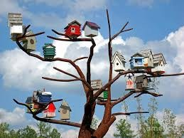 Birdhouse Competition