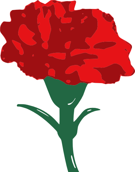 Student Council is selling Carnations for Valentine's Day