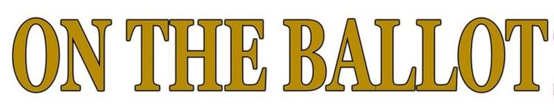BGISD School Board Election Ballot Thumbnail Image