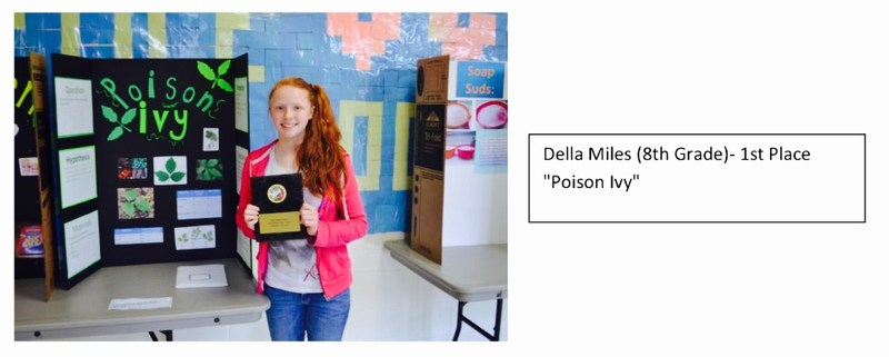 The Middle School's Annual Science Fair