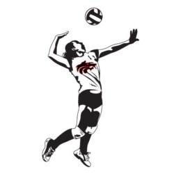 Volleyball Home Match vs Hemphill on Tuesday!