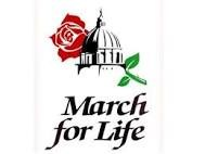Washington DC March for Life Thumbnail Image