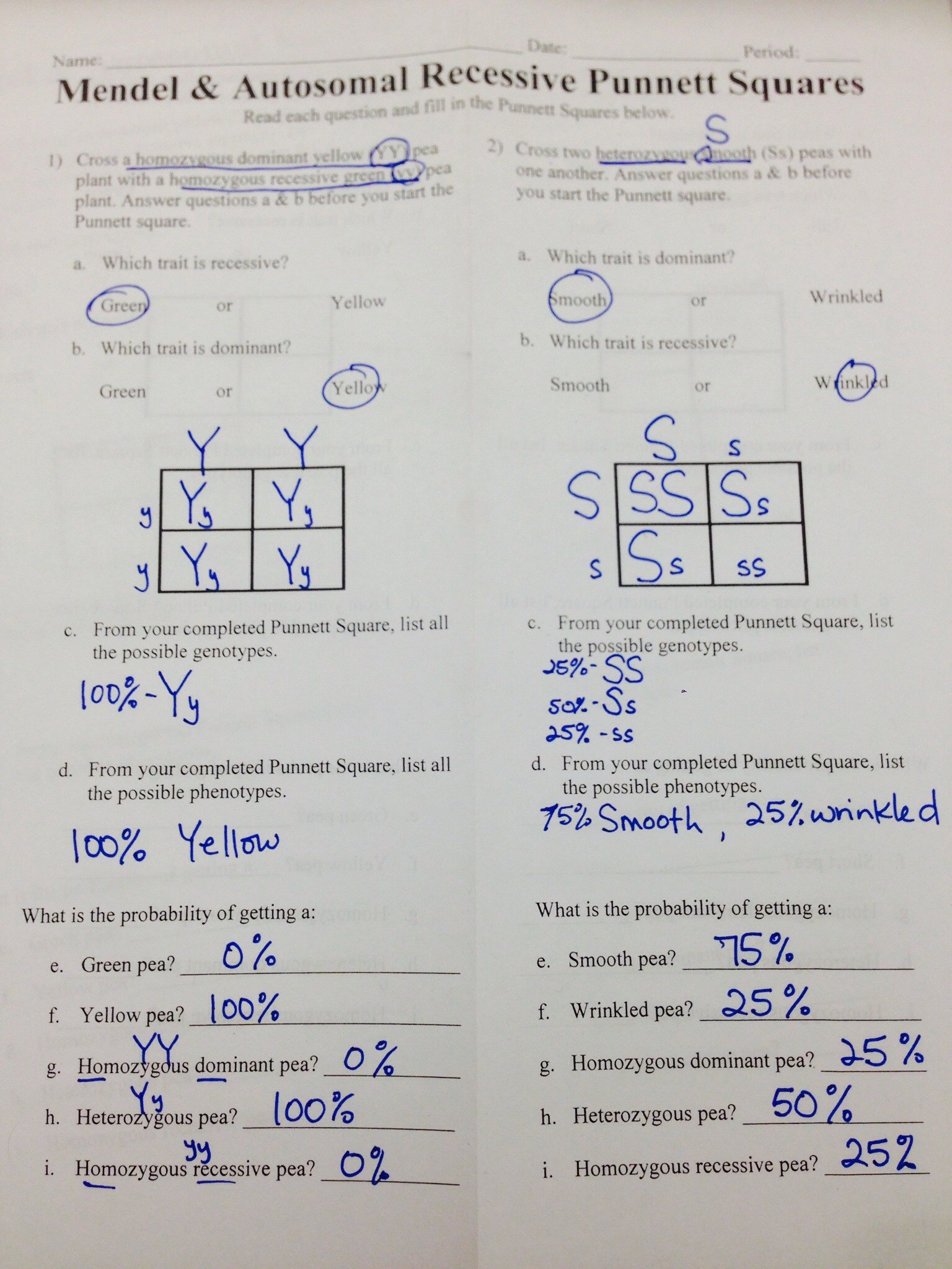 Go Back > Pix For > Mitosis Vs Meiosis Worksheet Answer Key