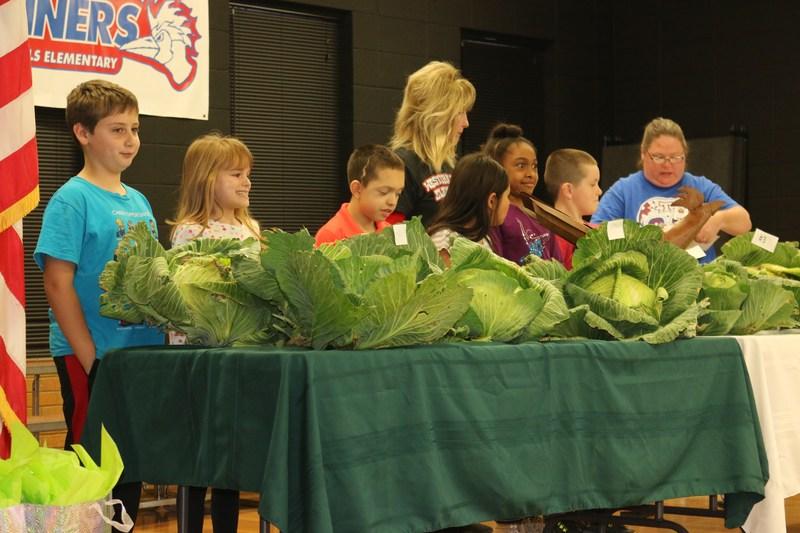 3rd Grade Bonnie Plants Cabbage Contest
