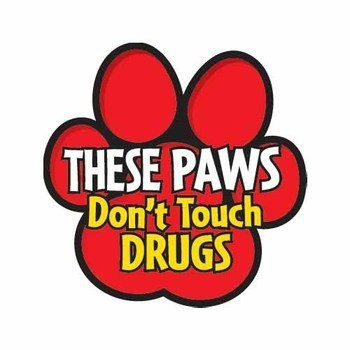 Image result for red ribbon week ideas