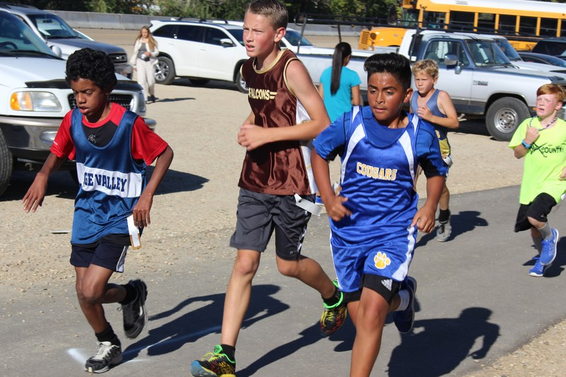 Cross Country District Results Are In! Thumbnail Image