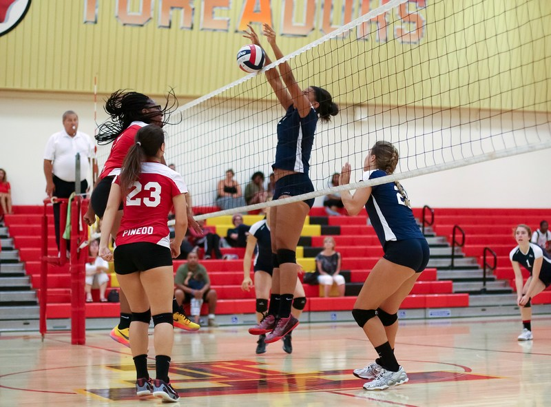 Palisades Sweeps Taft in Division I Girls Volleyball Showdown
