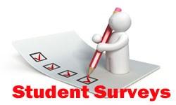 Student Voice Survey