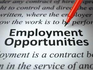 zzz-Employment-Pic.jpg