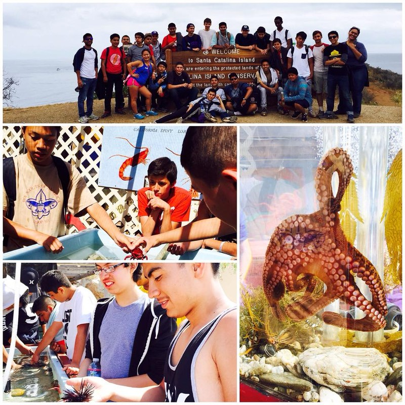 HONORS BIOLOGY FIELD TRIP TO CATALINA ISLAND