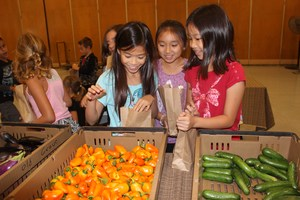 Clegg students look for the perfect produce