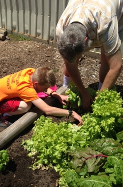Tiger Leadership Program Finds Green Thumb