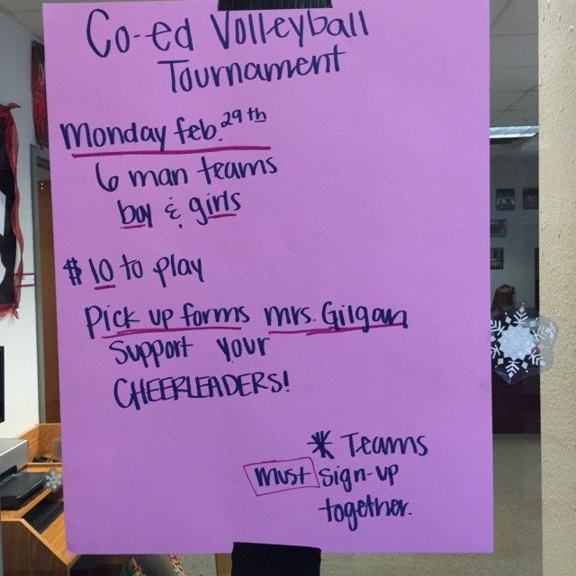 1st Annual Co-Ed Volleyball Tournament