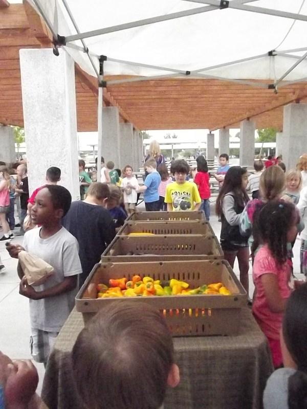 Hemet Unified School District's Mini Farmer's Markets