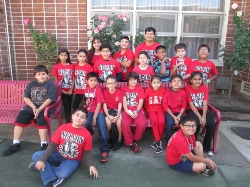 Nelson's Chess Students Continue to Win Medals