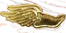 Winged shoe image